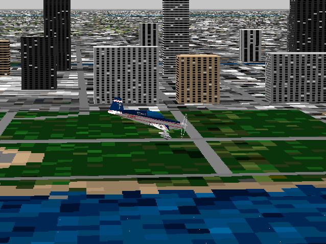 flight simulator 95